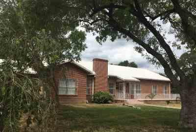 Laredo Single Family Home For Sale: 2404 Fremont St