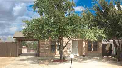 Laredo TX Single Family Home For Sale: $104,900