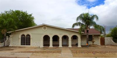 Zapata Single Family Home For Sale: 1704 Hidalgo St