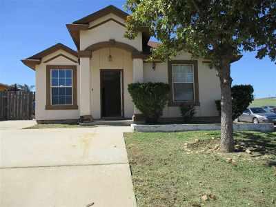 Laredo Single Family Home For Sale: 102 St Julia Ct