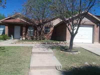 Laredo Single Family Home For Sale: 171 Kennedy Lp