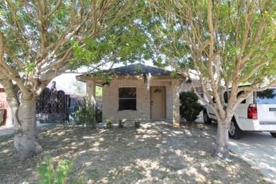 Laredo Single Family Home For Sale: 3334 Chacota St