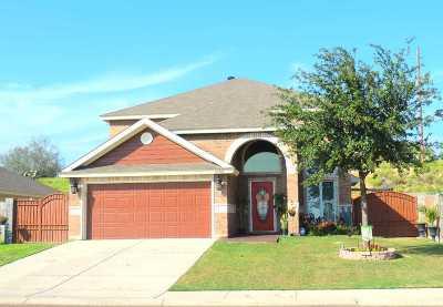 Laredo Single Family Home For Sale: 5302 Lost Hills Trail