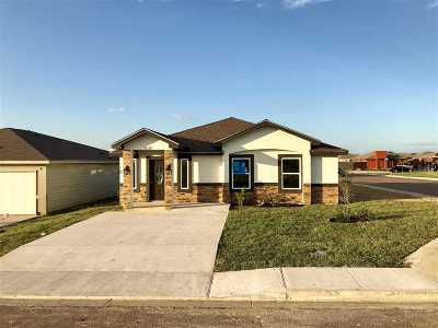 Laredo Single Family Home For Sale: 2420 Sabana Ln