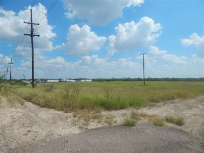 Laredo Commercial Lots & Land For Sale: Fm 1472 Mines Rd