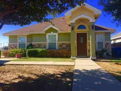 Laredo TX Single Family Home Option-Show: $107,900