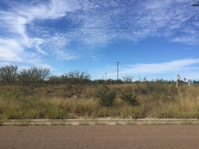 Laredo Residential Lots & Land For Sale: Out Of Area