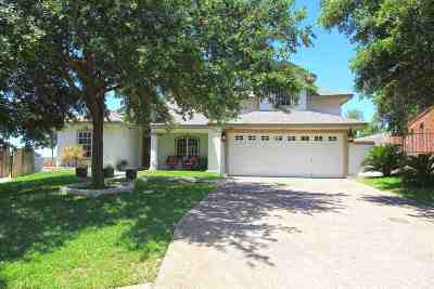 Laredo TX Single Family Home For Sale: $245,000