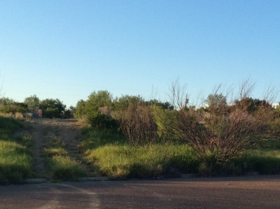 Laredo Residential Lots & Land For Sale: 104 Creek View Ct