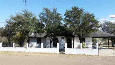 Zapata County Single Family Home For Sale: 5204 Pena Ln