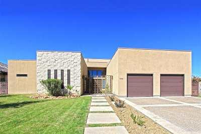 Laredo Single Family Home For Sale: 3020 Swift Dr