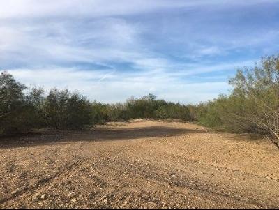 Laredo Residential Lots & Land For Sale: Schwarz