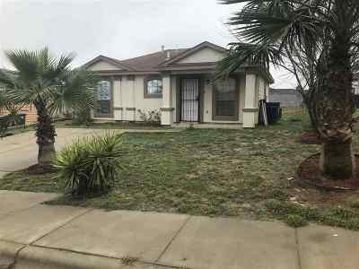 Laredo Single Family Home For Sale: 622 Bougainvillea St