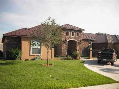 Laredo Single Family Home For Sale: 1203 Coahuila Loop