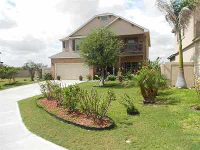 Laredo Single Family Home For Sale: 329 Sabal Loop