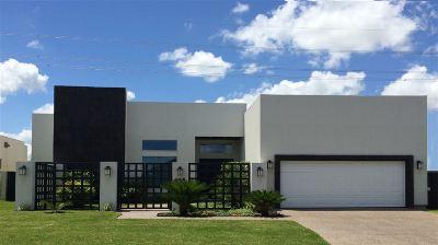 Laredo Single Family Home For Sale: 2915 Mehlhorn Lp