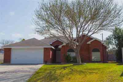 Laredo Single Family Home For Sale: 9025 Lady Di Lp