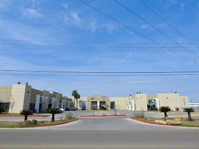 Laredo Commercial/Industrial For Sale: 8510 Las Cruces Dr