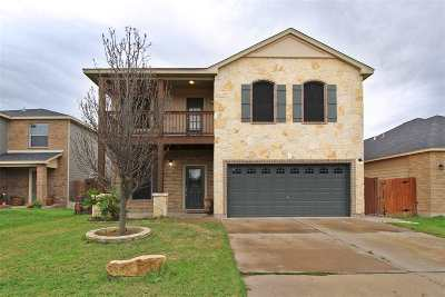 Laredo Single Family Home Extended: 13109 Entrada Lp