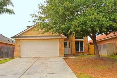 Laredo Single Family Home For Sale: 11132 Paso De Jacinto Lp