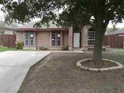 Laredo Single Family Home For Sale: 9105 Glacier Ct