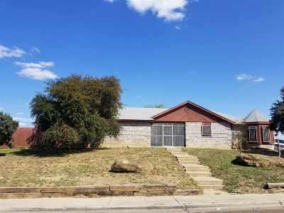 Laredo Single Family Home For Sale: 4002 Avenida Los Presidentes