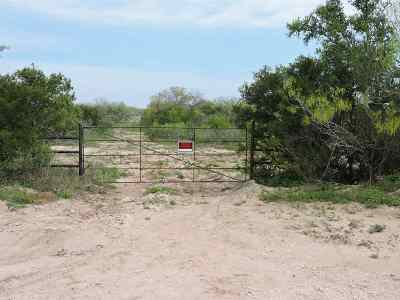 Residential Lots & Land Sold: Cr 332 Freer Out Of Area