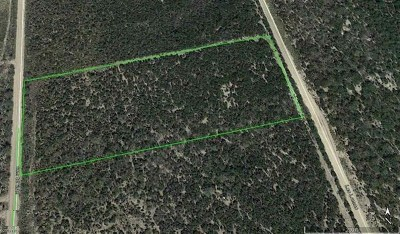 Residential Lots & Land For Sale: Tract 24 U.s. Hwy 59