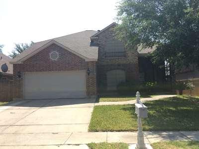 Laredo TX Single Family Home Active-Exclusive Agency: $287,500