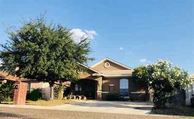 Laredo Single Family Home For Sale: 6005 Asis