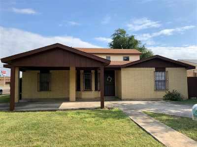 Laredo Single Family Home For Sale: 602 Jara Dr