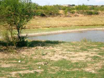 Laredo Residential Lots & Land For Sale: U.s. Hwy 359