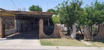 Laredo Single Family Home For Sale: 516 Poggenpohl St