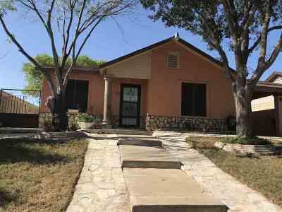 Laredo Single Family Home For Sale: 169 Kennedy Lp