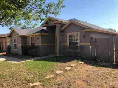 Laredo Single Family Home For Sale: 12608 Black Hawk Cir