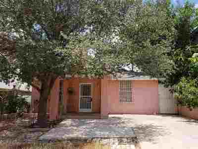 Laredo Single Family Home For Sale: 2306 Cassata Ln