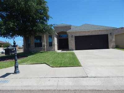 Laredo Single Family Home For Sale: 3923 Aidin St