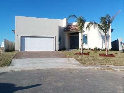 Laredo Single Family Home Active-Exclusive Agency: 107 Pradera Dr.