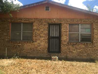 Laredo Single Family Home For Sale: 1301 Clark Blvd
