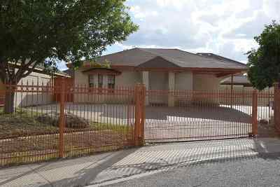 Laredo Single Family Home For Sale: 304 Begona Ct