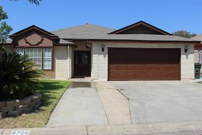 Laredo Single Family Home For Sale: 8706 Yucatan Lp