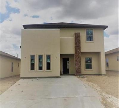 Laredo Single Family Home For Sale: 5730 Moses Lp.