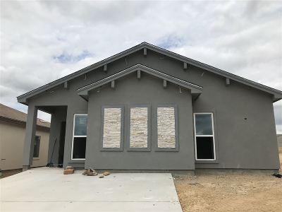Laredo Single Family Home For Sale: 5726 Moses Lp.