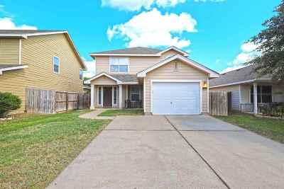 Laredo Single Family Home For Sale: 17530 College Port Dr
