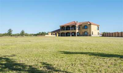 Laredo Single Family Home Option-Show: 10000 Falcon Dr