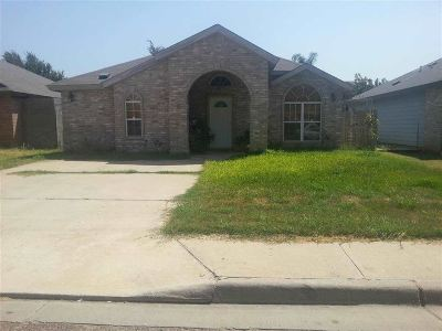 Laredo Single Family Home For Sale: 10215 Comet Dr