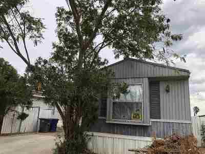 Laredo Single Family Home For Sale: 4935 San Felipe Ln