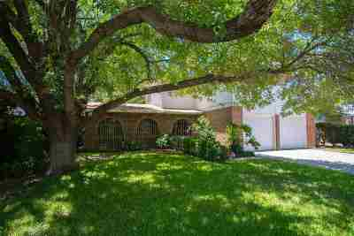 Laredo TX Single Family Home For Sale: $205,000