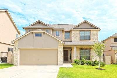Laredo Single Family Home Option-Show: 107 Tranquilo Dr