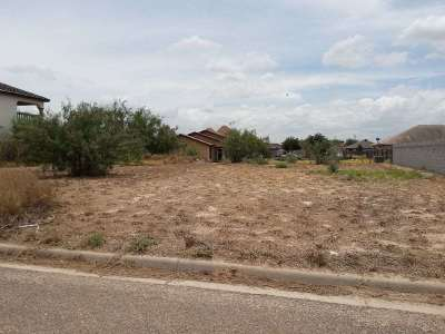 Laredo Residential Lots & Land For Sale: 1433 Franc Cigarroa Dr